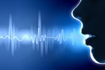 soundwave2-1024x682-1